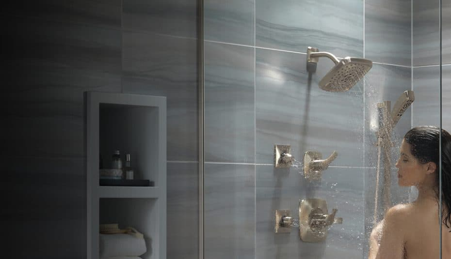 best dual shower heads review