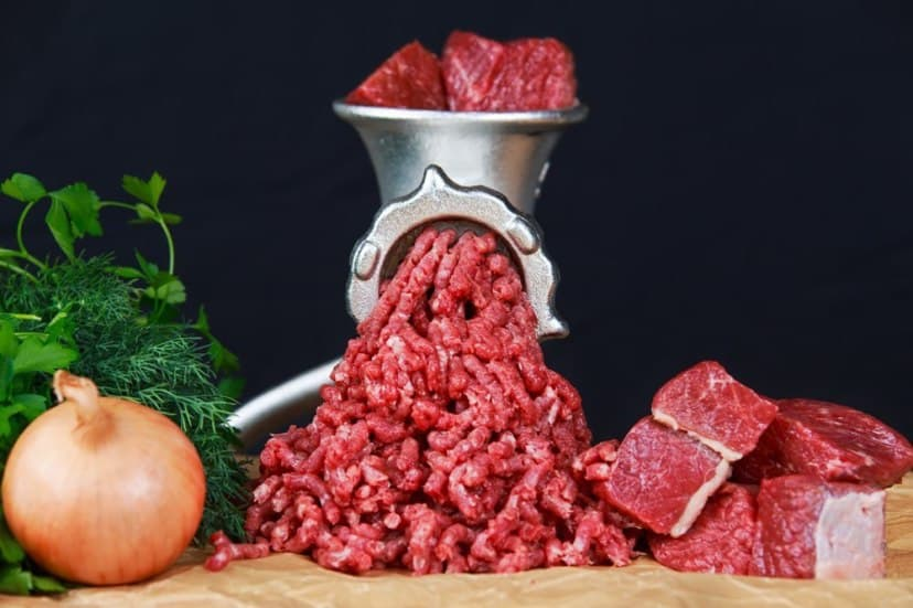 best manual meat grinders review