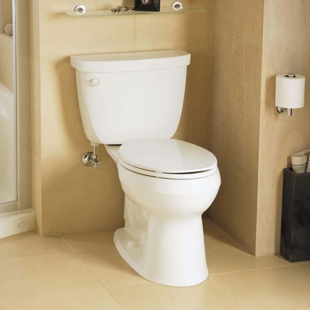 8 Best Kohler Toilets -1