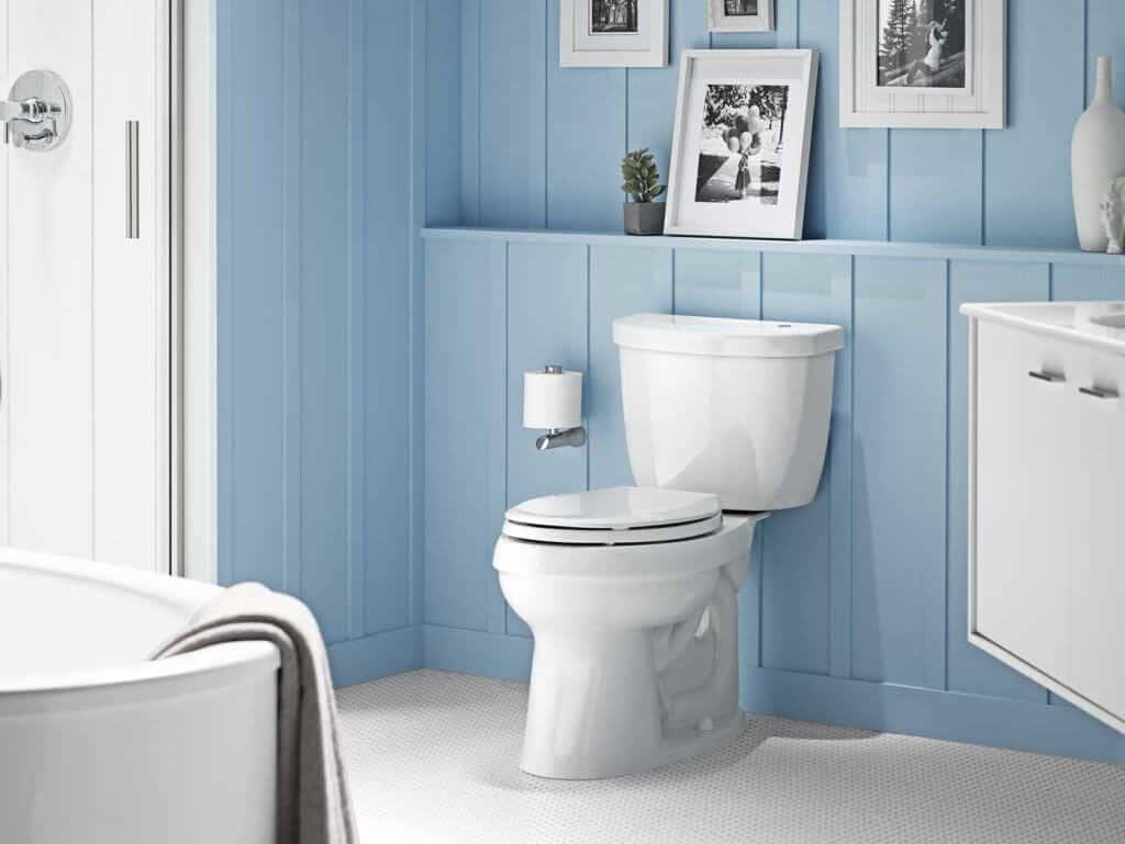 8 Best Kohler Toilets -4