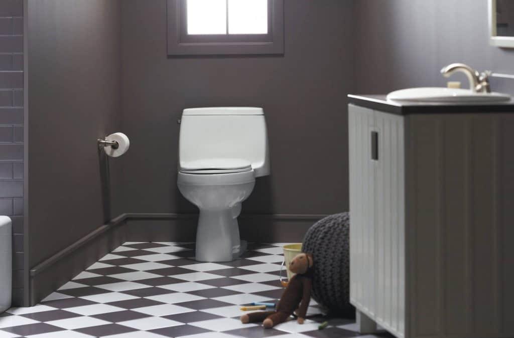 8 Best Kohler Toilets -5