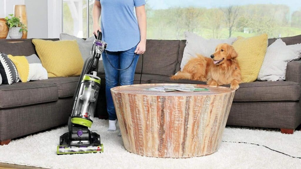 Best Portable Carpet Cleaners -9