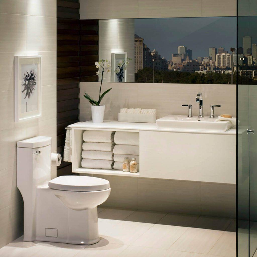 8 Best American Standard Toilets