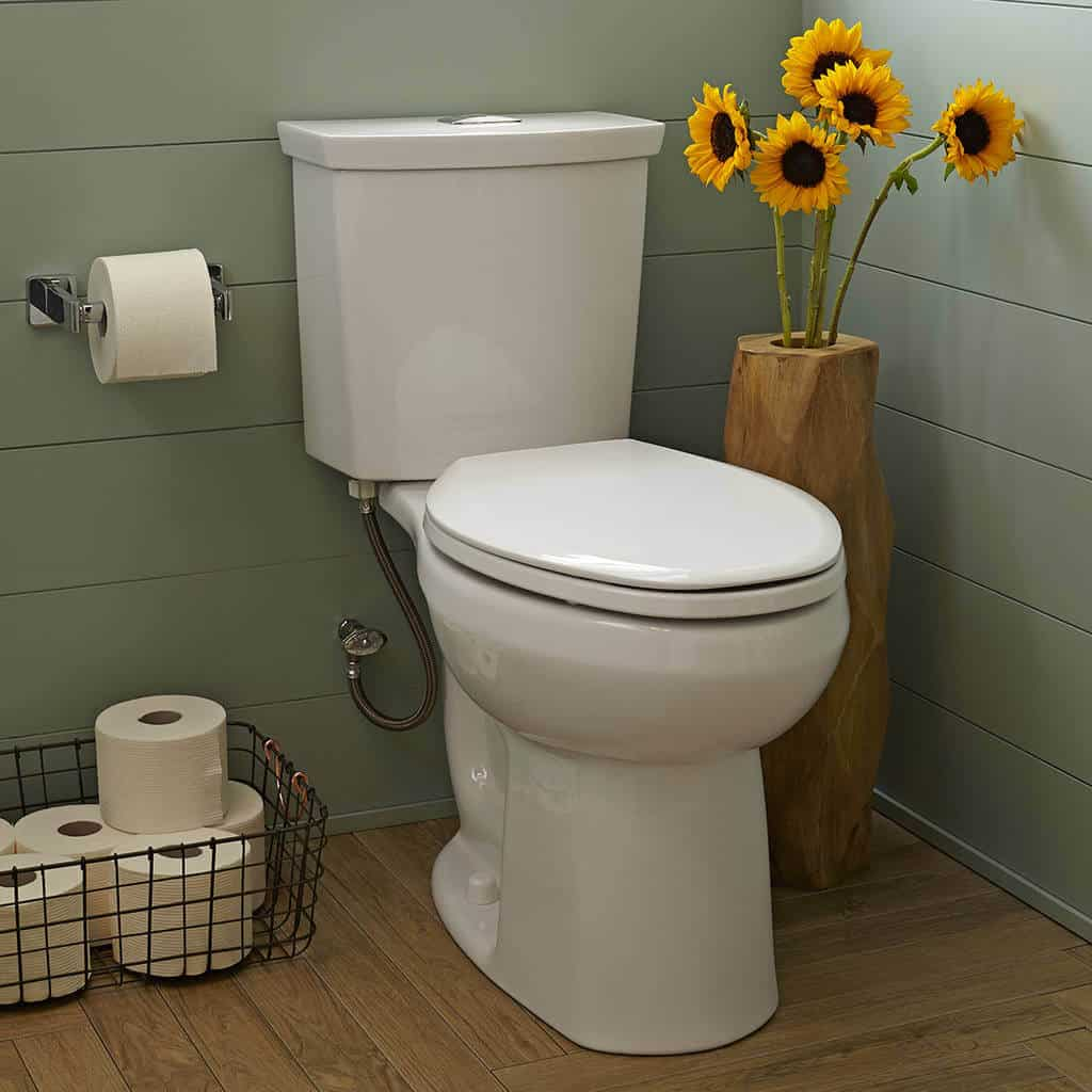 9 Best Flushing Toilets -3