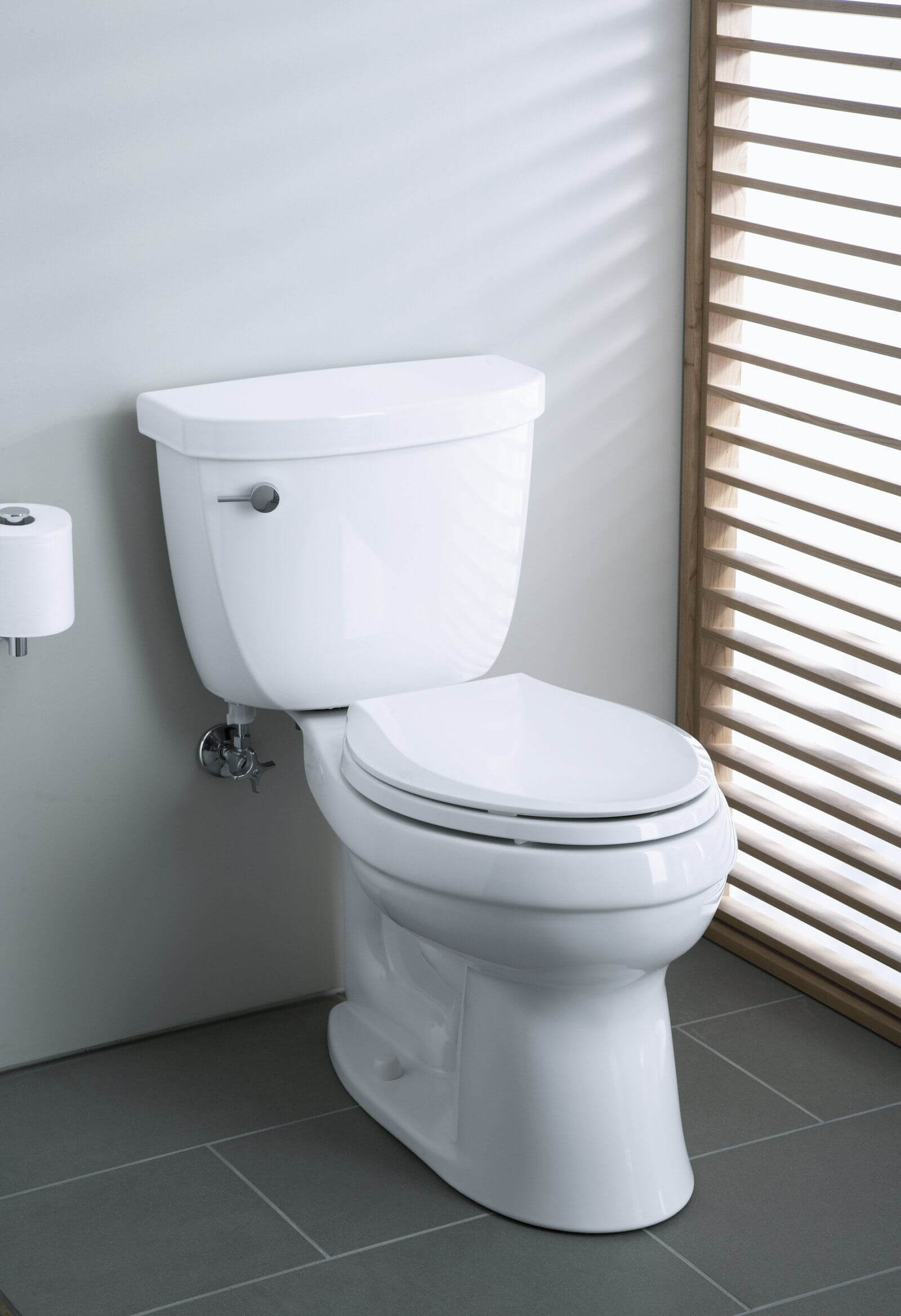 9 Best Flushing Toilets
