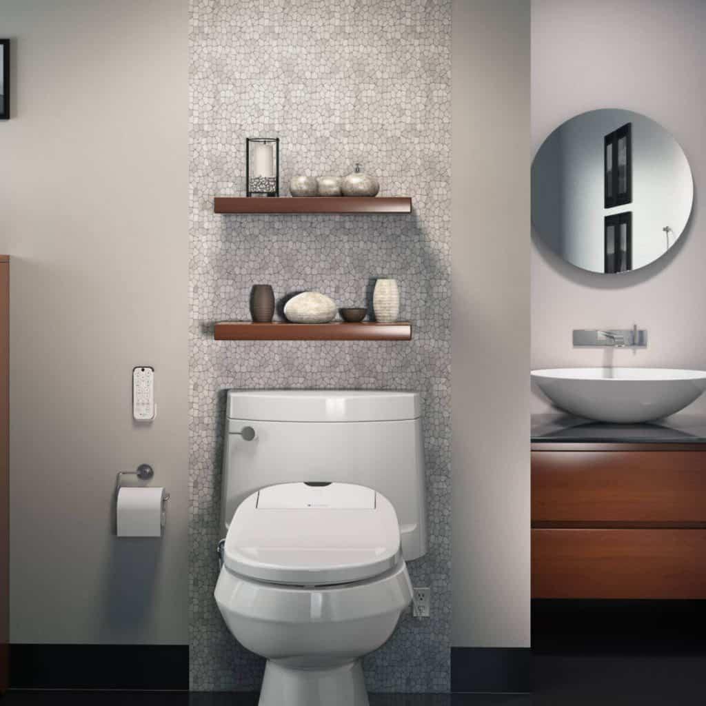 9 Best Heated Toilet Seats-1