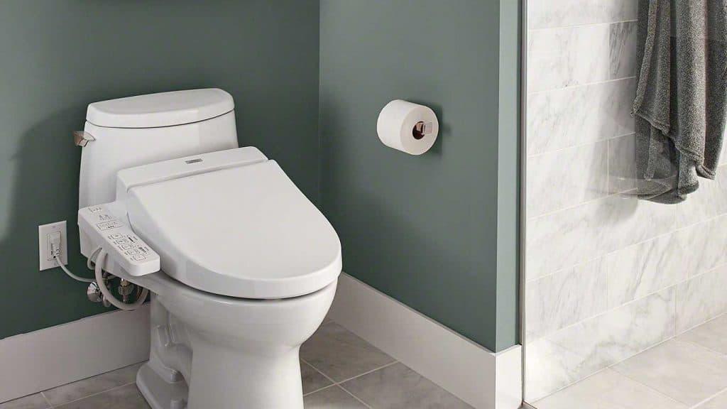 9 Best Heated Toilet Seats-5