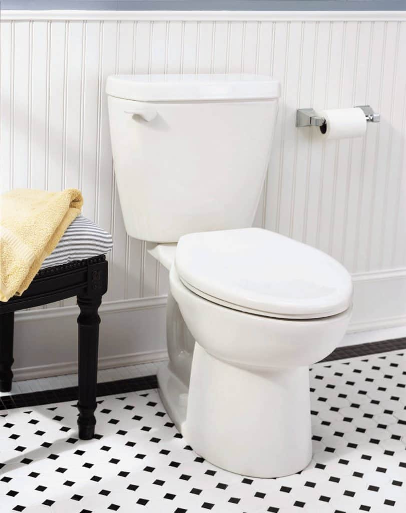 Best Dual Flush Toilets -1