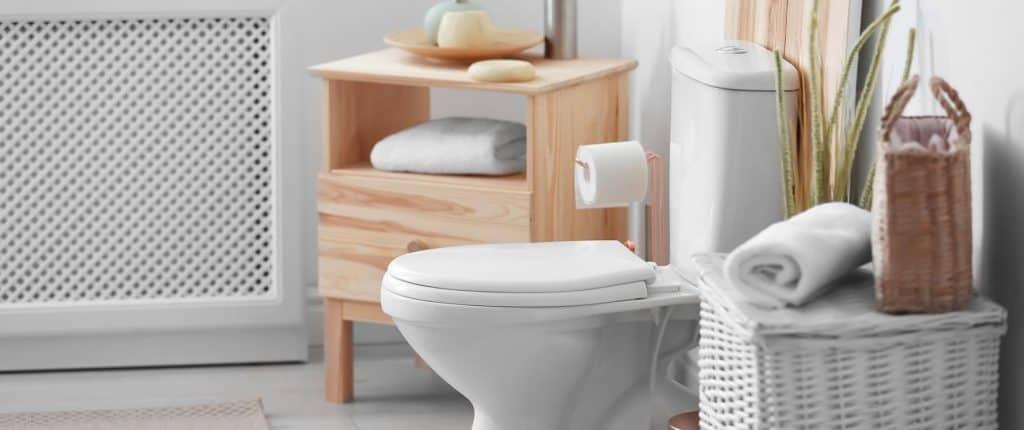 Best Toilet Seats-1