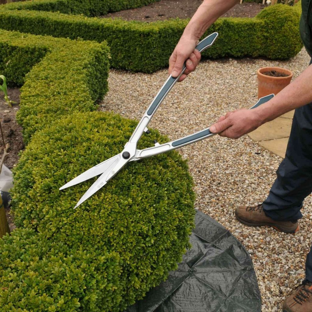 10 Best Hedge Shears-2