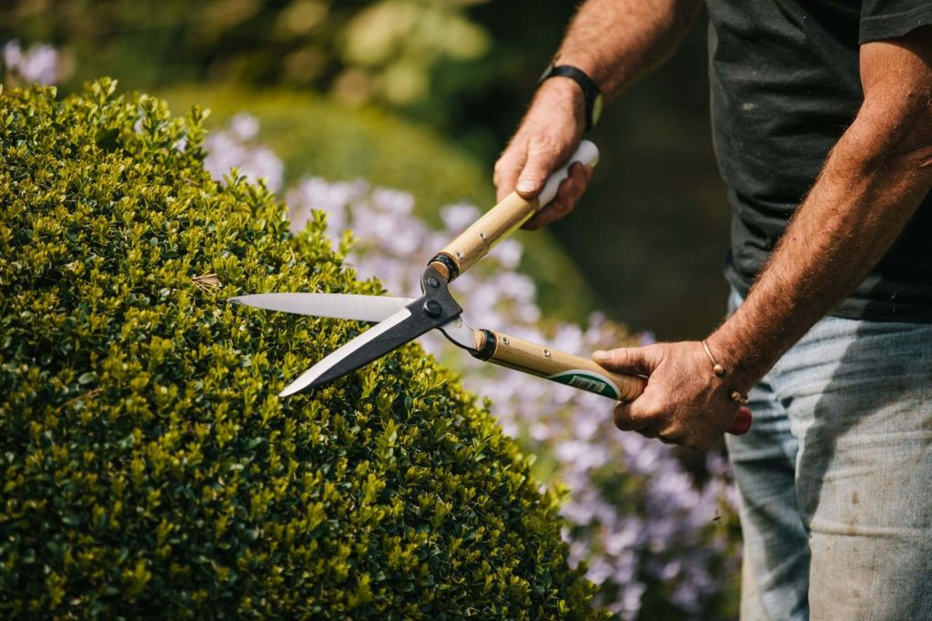 10 Best Hedge Shears-4