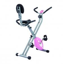 Sunny Health & Fitness Bike